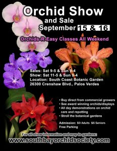 SBOS Fall Flyer