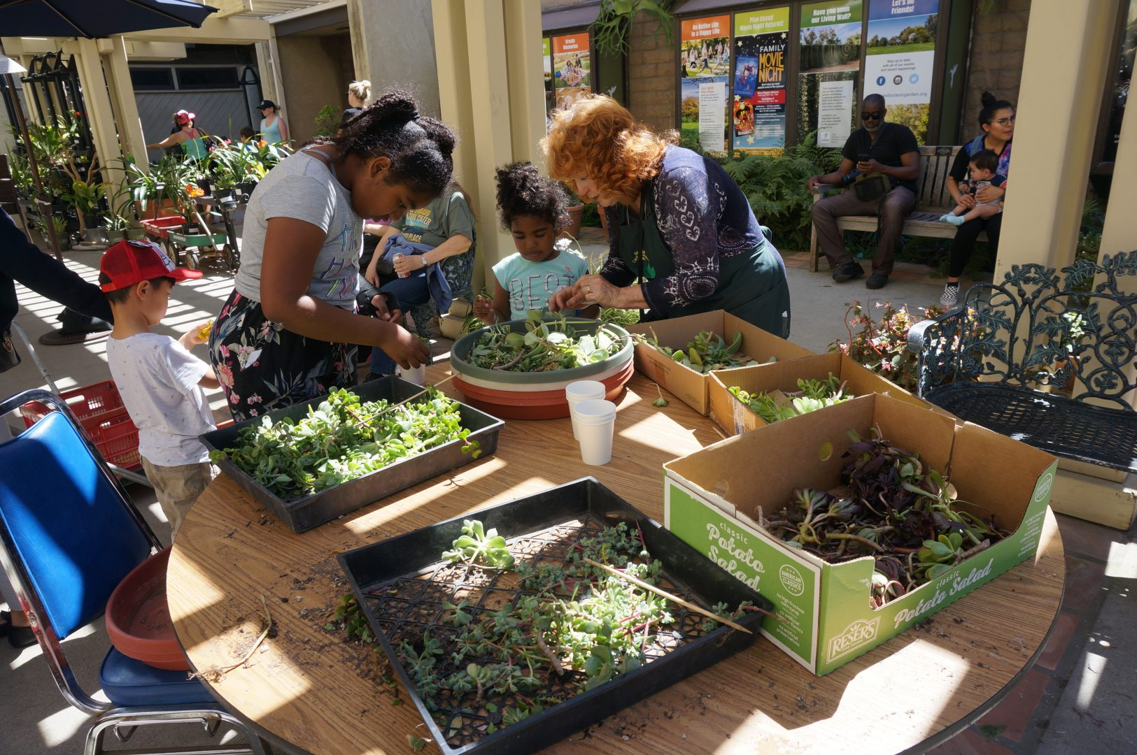 Children's Potting Workshop
