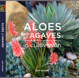 Jeff Moore Book - Aloes and Agaves