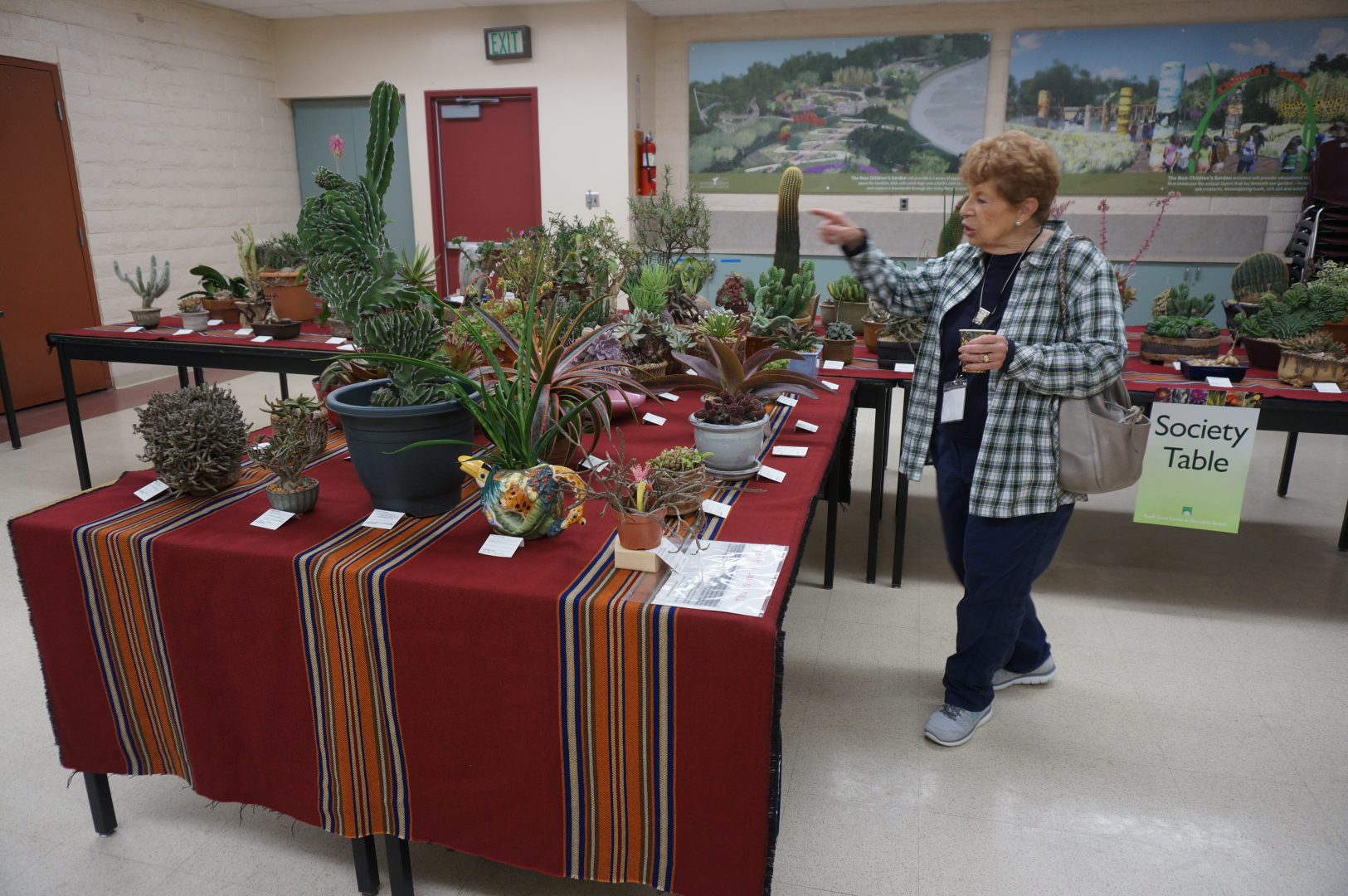 Society Club member's display plants