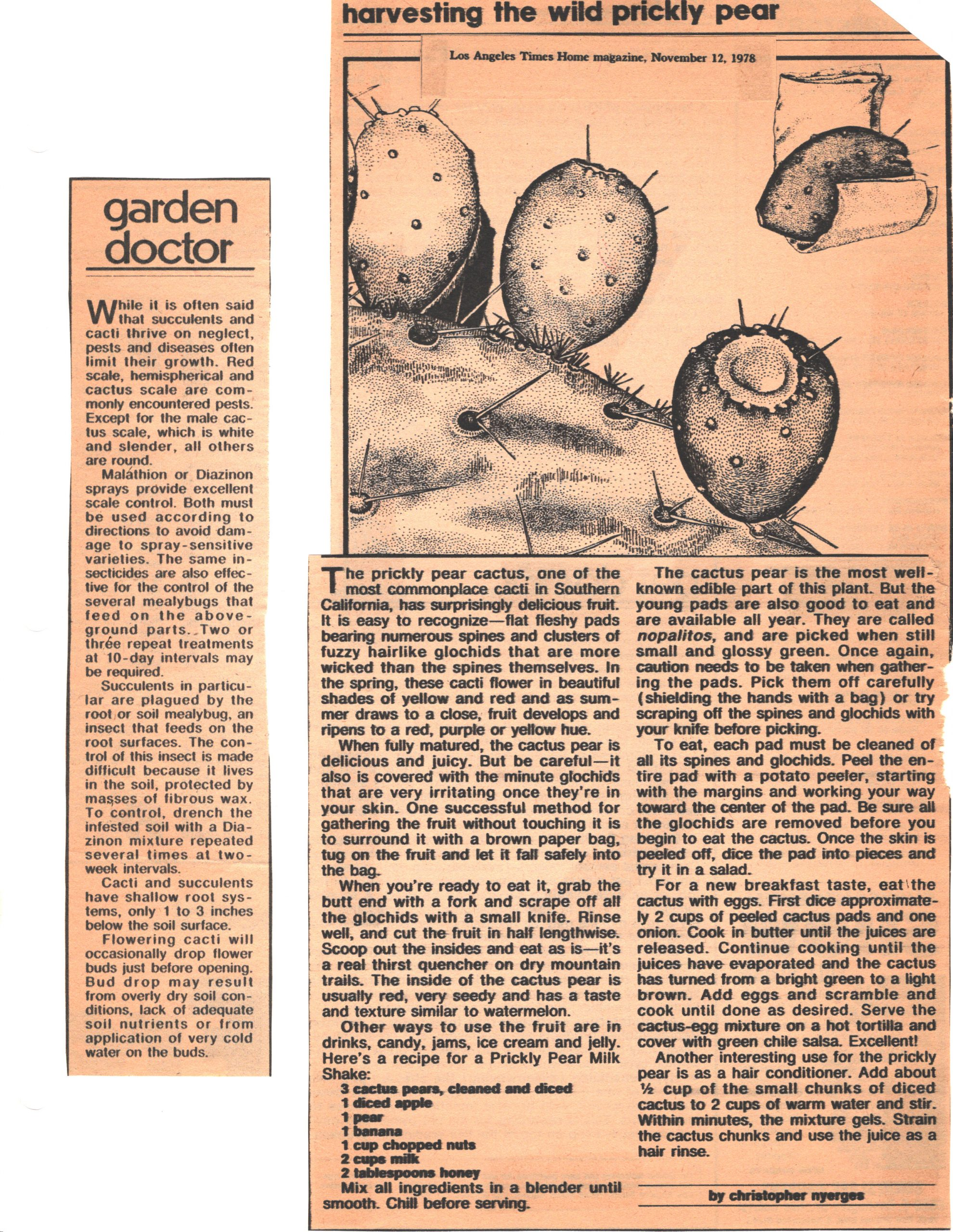 SCCSS-Cuttings-1978-11-12